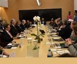 Diaz-Canel-reunión-en-google-580x387