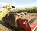 Trabajo agricola Cuba